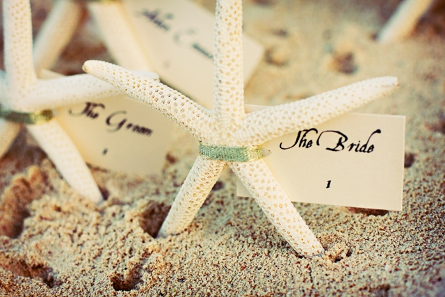 Ideas of destination wedding party happyinvitation destination weddings ideas junglespirit Image collections