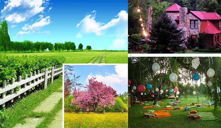 beautiful picini wedding location