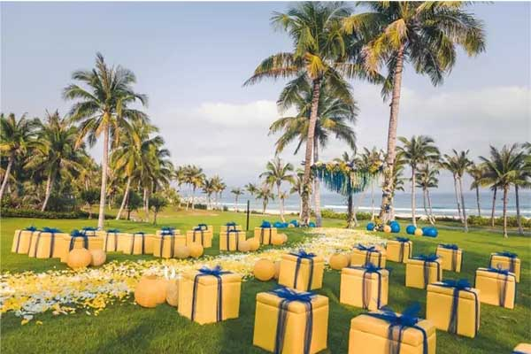 blue and yellow outdoor wedding party