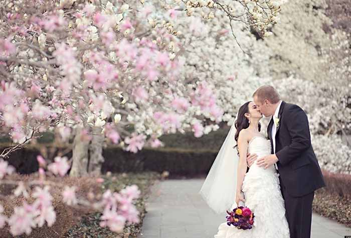 romantic cherry blossom wedding