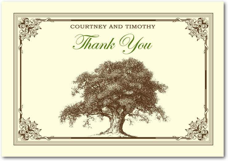 Old Towering Trees Liana Frame Thank You Card HPT010